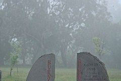 Burns-Family-Graves-in-the-mist