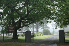 Front-gates-mist