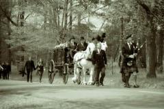 Piper-horses