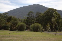 The-Mount