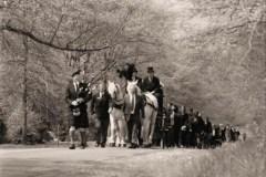 Piper-horses-2